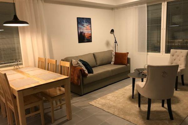 Ski Suite Levi 311 (54 m²)