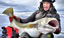 Любительская ловля трески в Норвегии