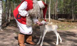 Что делает Санта Клаус летом и не жарко ли ему с такой бородой