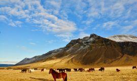 Ісландія у вересні