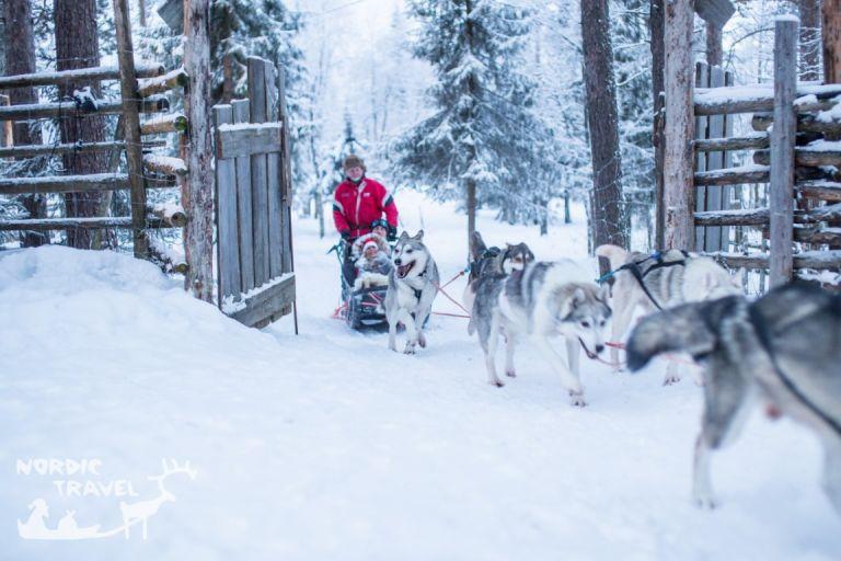 Сімейний тур в Леві на Різдво