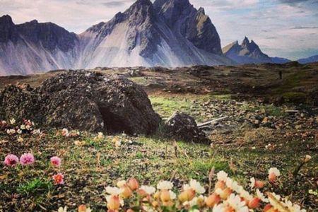 Навколо Ісландії за 9 днів