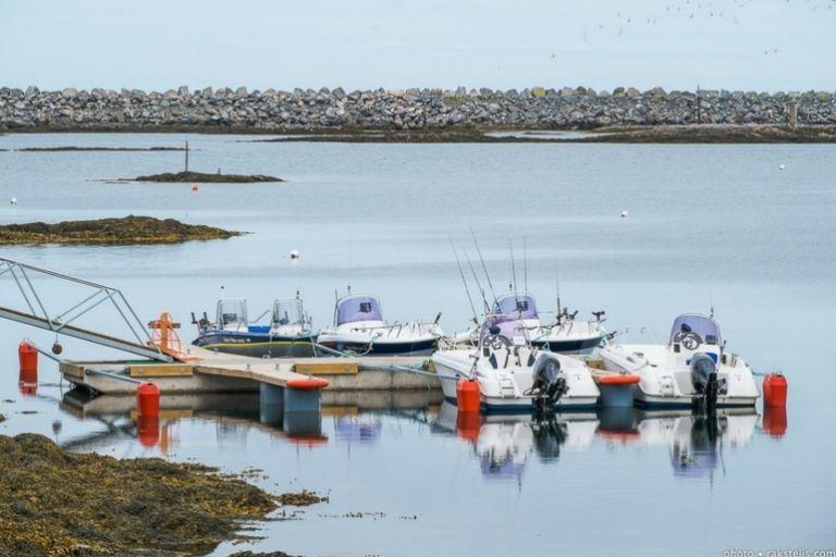 Трофейна риболовля в Північній Норвегії в Анденесі