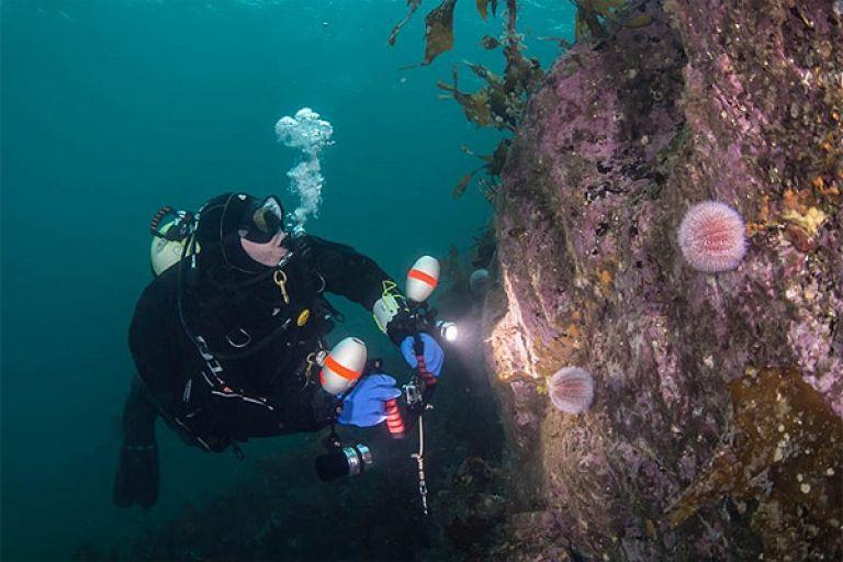 Бюджетна морська риболовля біля Бергена (острів Сутра)
