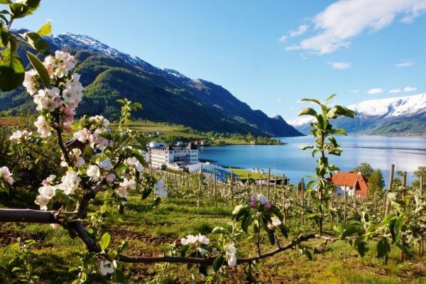 Великий авіатур Норвегією