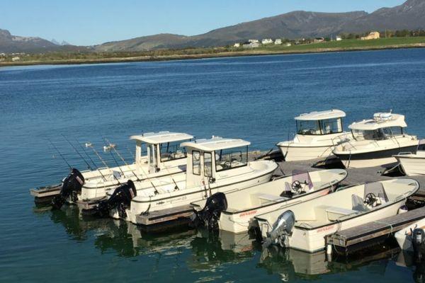Риболовля на Лофотенських островах