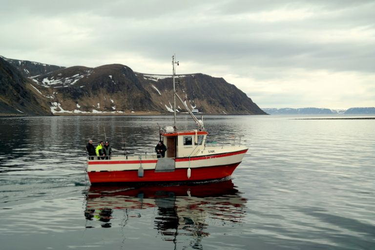 Трофейна риболовля в Північній Норвегії на острові Магерьоя