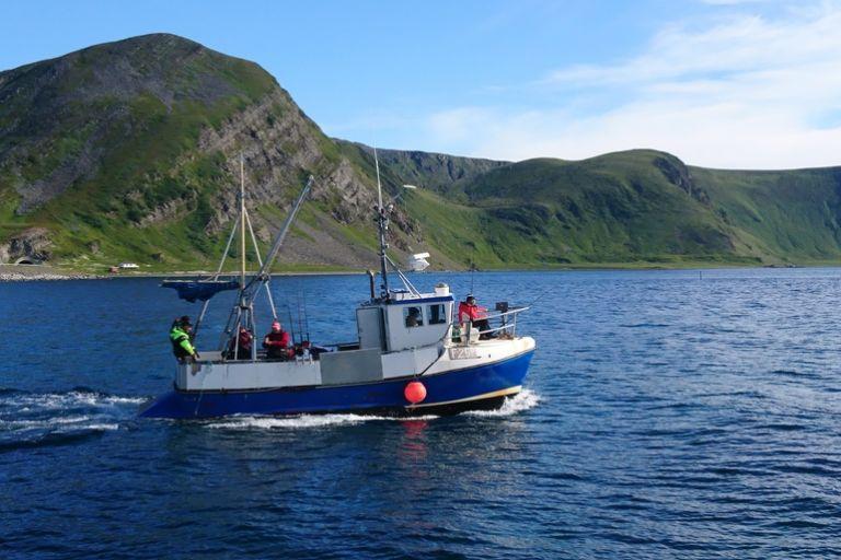 Трофейная рыбалка в Северной Норвегии на острове Магерёйа