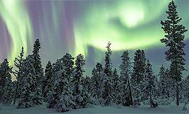 Отзывы об индивидуальных турах в Финляндию