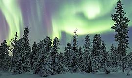 Відгуки про індивідуальні тури до Фінляндії