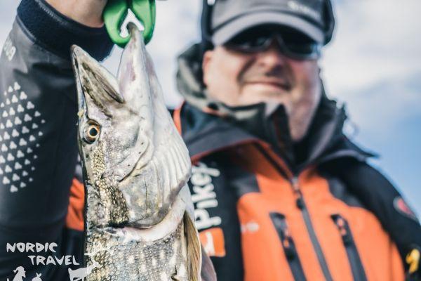 Фото і відео з риболовних турів до Фінляндії