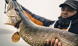Фото и видео из рыболовных туров в Финляндию