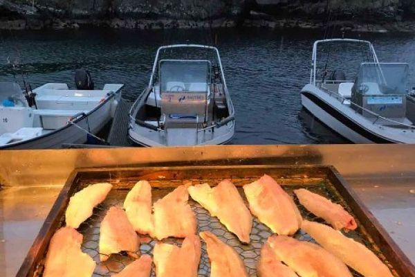 Фото и видео из рыболовных туров в Норвегию