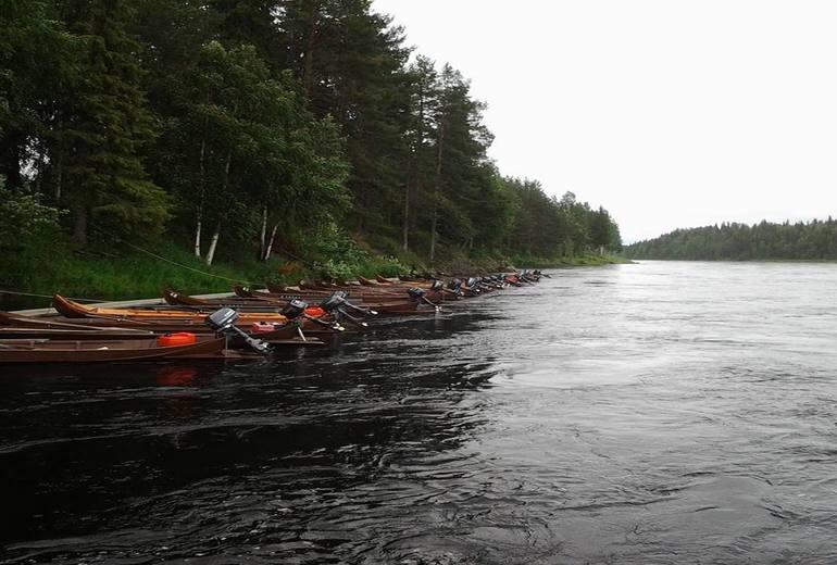 Лососева рибалка на півночі Фінляндії