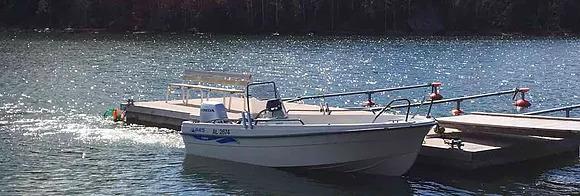 VIP риболовля на Аландських  островах