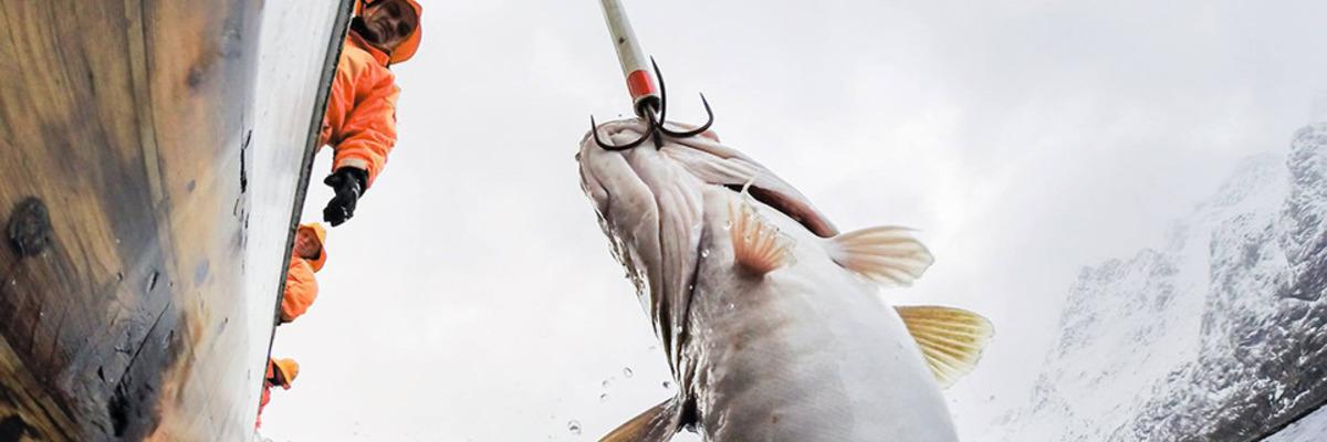 Рибалка в Норвегії самостійно