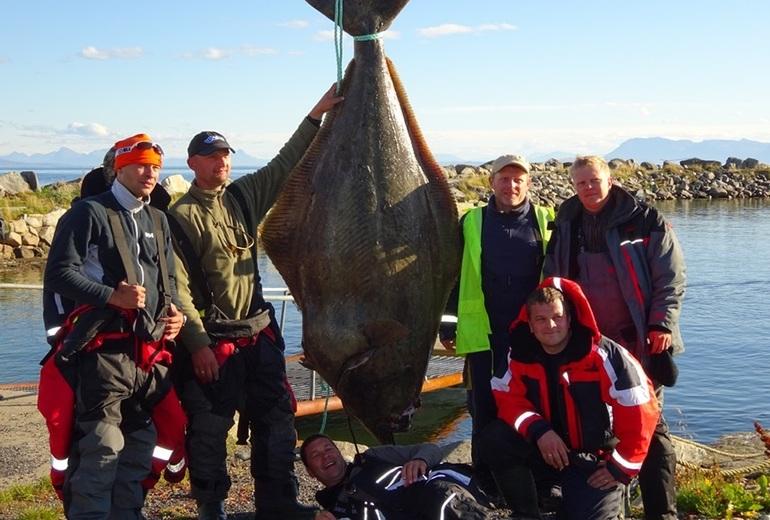 Трофейна рибалка в Північній Норвегії в Анденесі