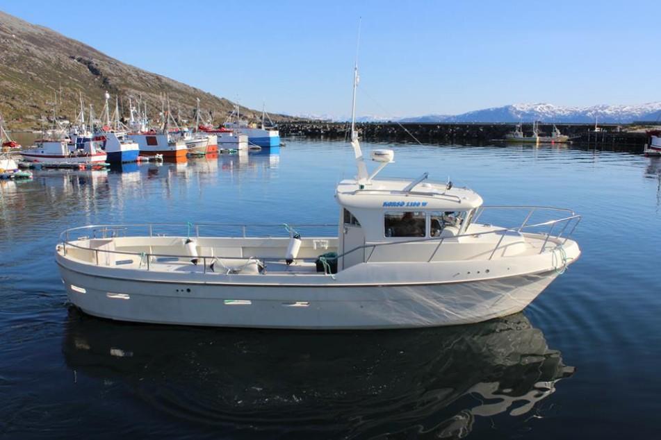Рибалка на Півночі Норвегії (Торсваг)